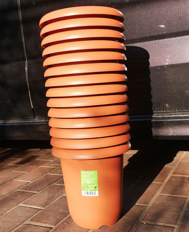 ダイソーでPLANT-POT-COLLECTIO-長鉢7号を14個買って来た1.jpg