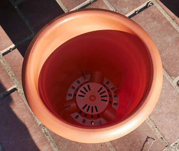 ダイソーでPLANT-POT-COLLECTIO-長鉢7号を14個買って来た3.jpg