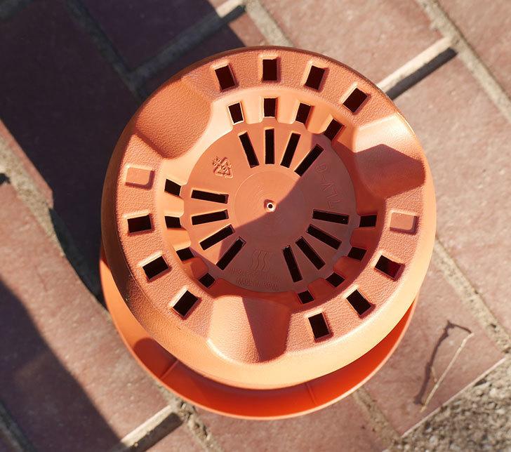 ダイソーでPLANT-POT-COLLECTIO-長鉢7号を14個買って来た4.jpg