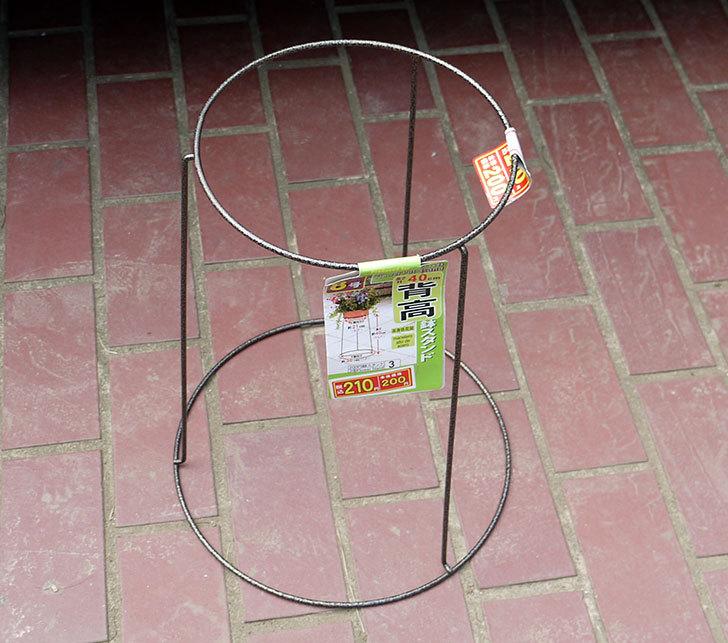 ダイソーでSteel-HIgh-Flower-Pot-Stand-8号を買って来た2.jpg