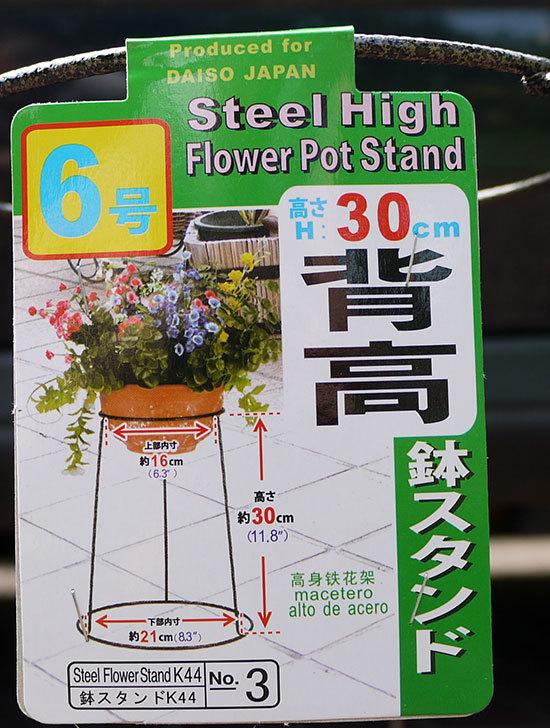 ダイソーでSteel-HIgh-Flower-Stand-K44-NO3-6号を買って来た3.jpg