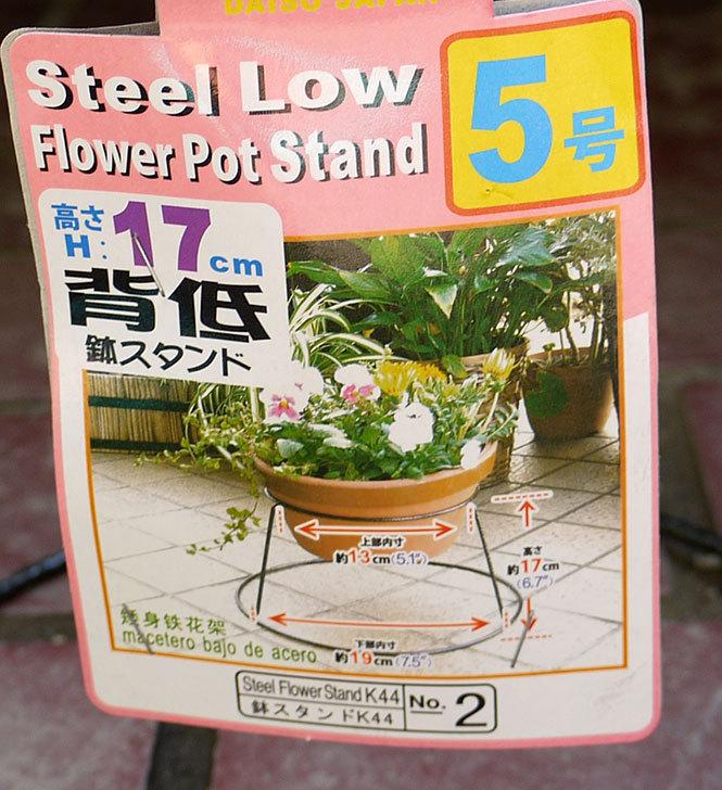 ダイソーでSteel-Low-Flower-Stand-5号、6号、7号を買って来た6.jpg
