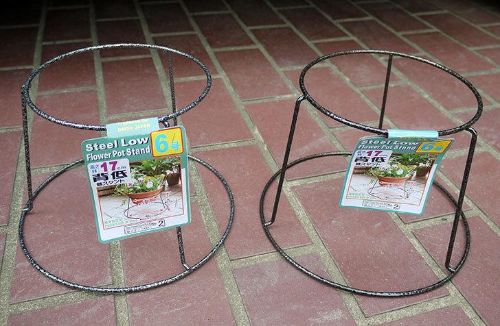 ダイソーでSteel-Low-Flower-Stand-K44-6号を2個買って来た1.jpg