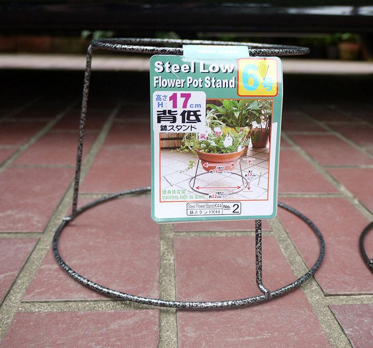 ダイソーでSteel-Low-Flower-Stand-K44-6号を2個買って来た2.jpg