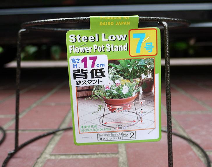 ダイソーでSteel-Low-Flower-Stand-K44-7号を2個買って来た2.jpg