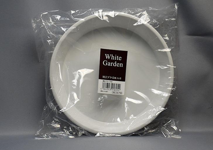 ダイソーでWhite-Garden-園芸プラ受皿-A-6を買って来た2.jpg