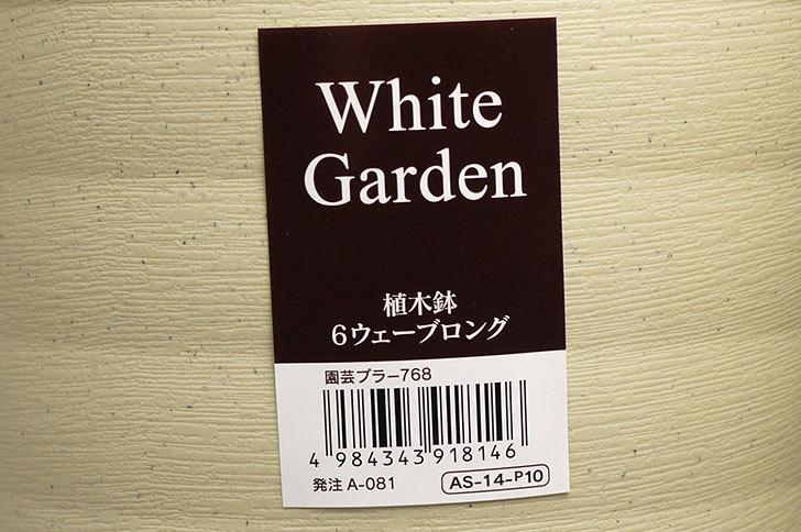 ダイソーでWhite-Garden-植木鉢-6ウェーブロングを買って来た6.jpg