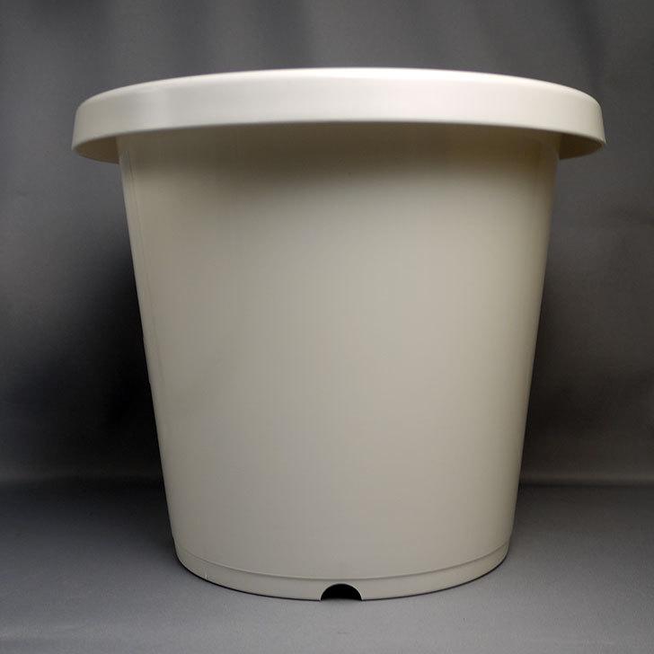 ダイソーでWhite-Garden-植木鉢-7MCを買って来た2.jpg