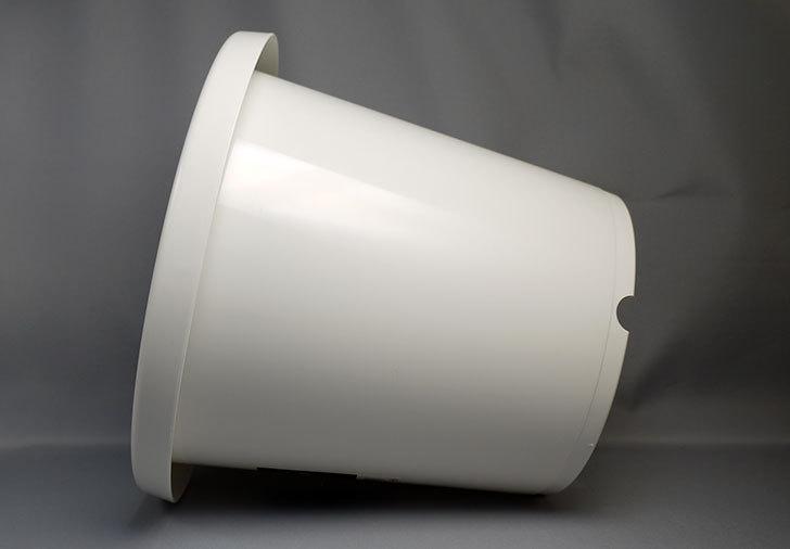 ダイソーでWhite-Garden-植木鉢-7MCを買って来た3.jpg