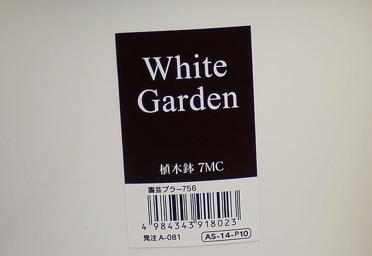 ダイソーでWhite-Garden-植木鉢-7MCを買って来た6.jpg