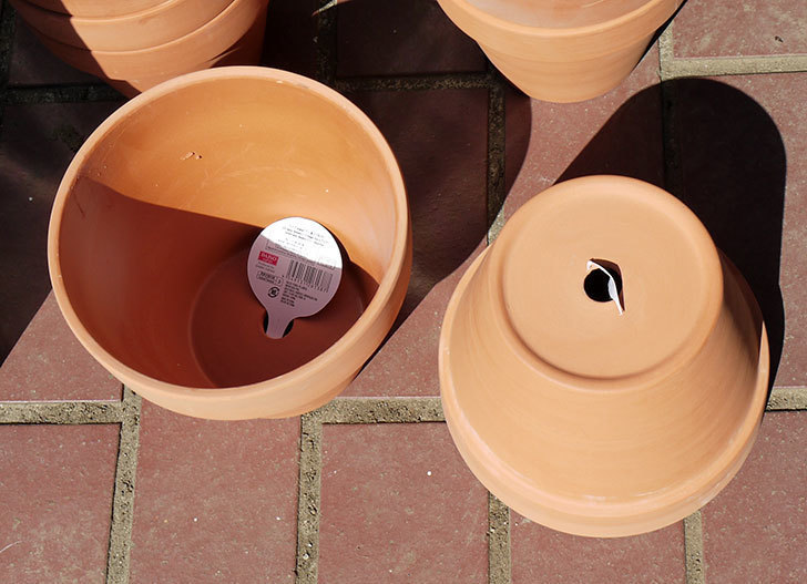 ダイソーに素焼植木鉢-約17cmの在庫が久々にあったので買って来た2.jpg