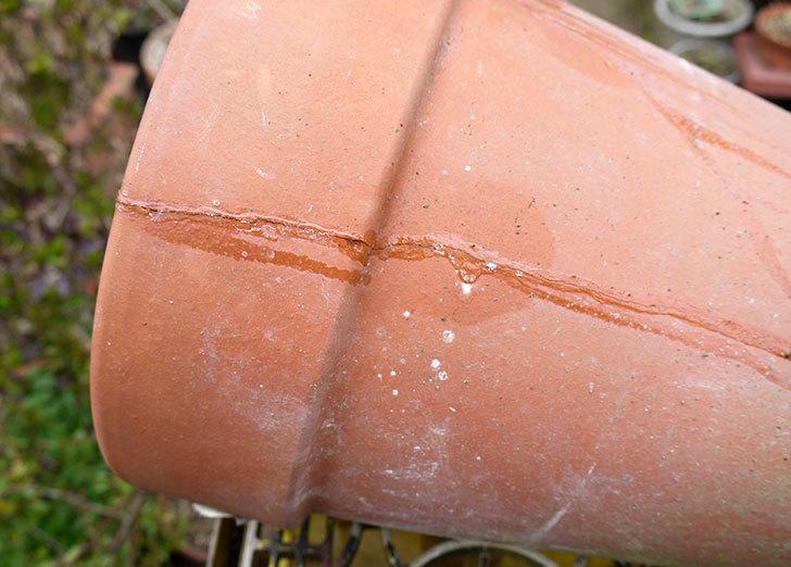 ダイソーの木工陶磁器用-強力瞬間接着剤で植木鉢のヒビを修理した7.jpg