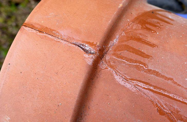 ダイソーの木工陶磁器用-強力瞬間接着剤で植木鉢のヒビを修理した9.jpg