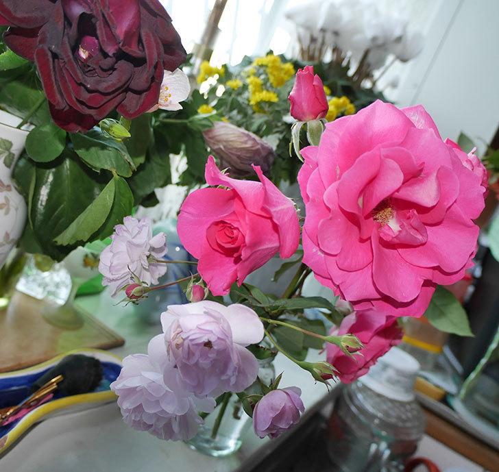 ツルうらら(ツルバラ)の秋花を切り花にした。2017年-5.jpg