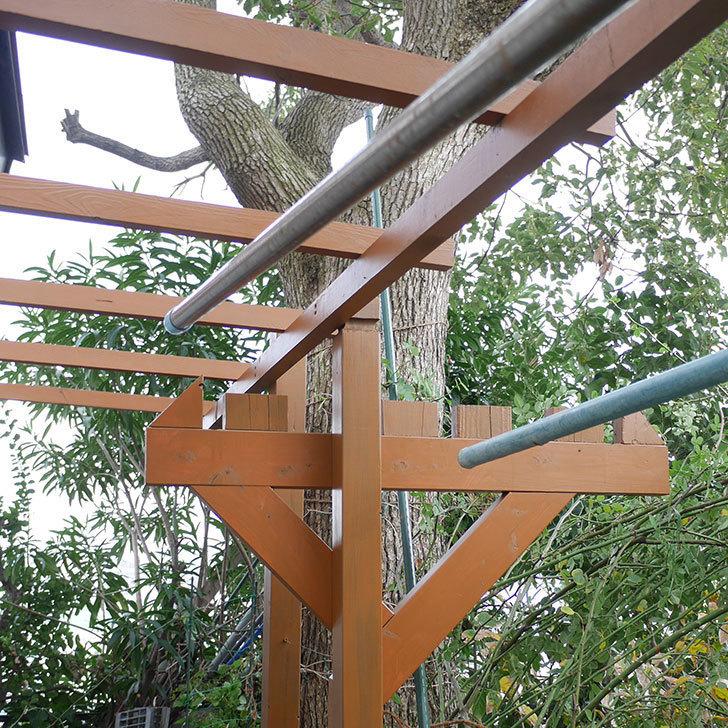 ツルバラの誘引を解いてパーゴラと物干し台に木部保護塗料を塗った。2018年-1.jpg