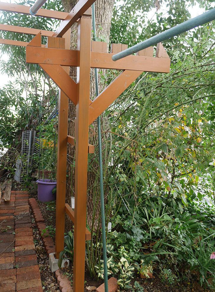 ツルバラの誘引を解いてパーゴラと物干し台に木部保護塗料を塗った。2018年-2.jpg