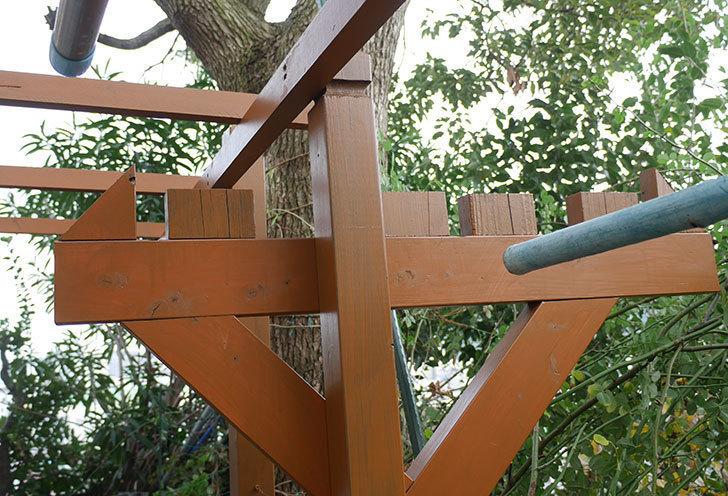 ツルバラの誘引を解いてパーゴラと物干し台に木部保護塗料を塗った。2018年-3.jpg