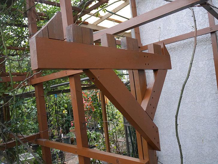 ツルバラの誘引を解いてパーゴラと物干し台に木部保護塗料を塗った(2)。2019年-2.jpg