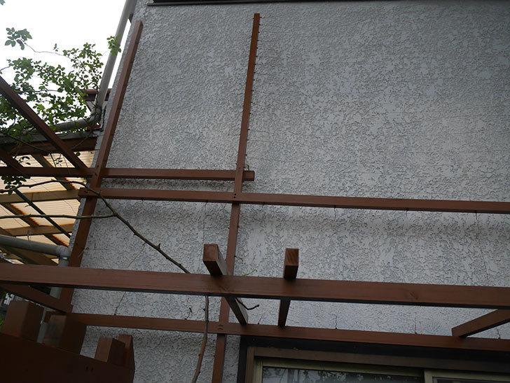 ツルバラの誘引を解いてパーゴラと物干し台に木部保護塗料を塗った(2)。2019年-3.jpg