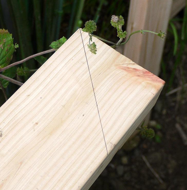 ツーバイフォーの檜板を物干し台用に切った3.jpg