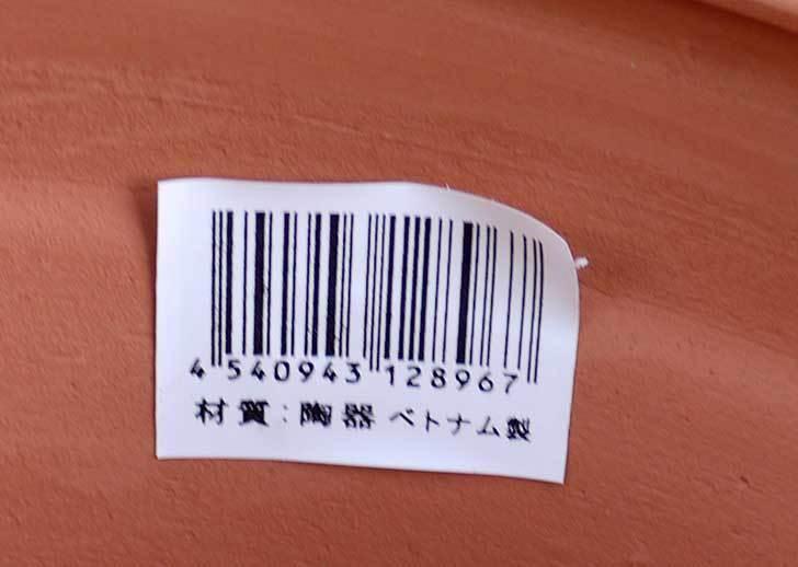 テラコッタライン柄Mを2個ケイヨーデイツーで買って来た4.jpg