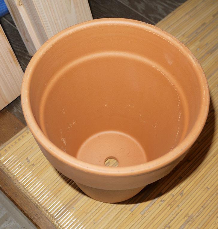 デローマ-トールポット(DEROMA-vaso-alto-Art.0D-180SZ)18cm-(6号)がケイヨーデイツーで198円-2.jpg