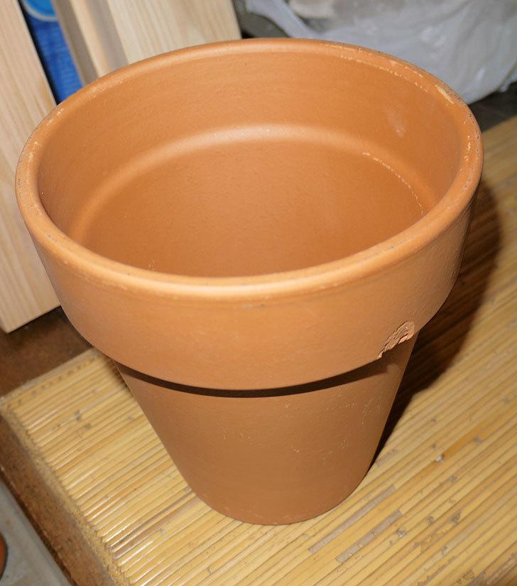 デローマ-トールポット(DEROMA-vaso-alto-Art.0D-180SZ)18cm-(6号)がケイヨーデイツーで198円-3.jpg