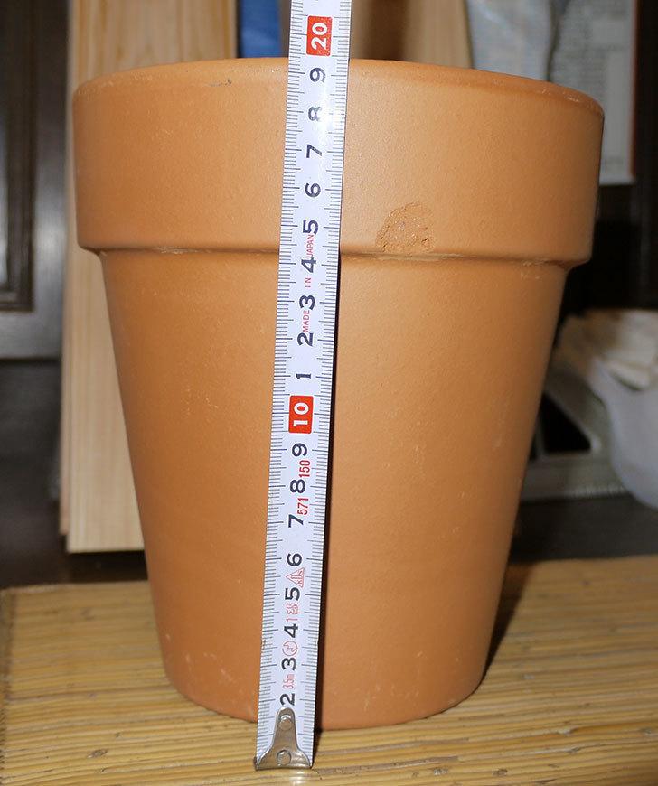 デローマ-トールポット(DEROMA-vaso-alto-Art.0D-180SZ)18cm-(6号)がケイヨーデイツーで198円-5.jpg