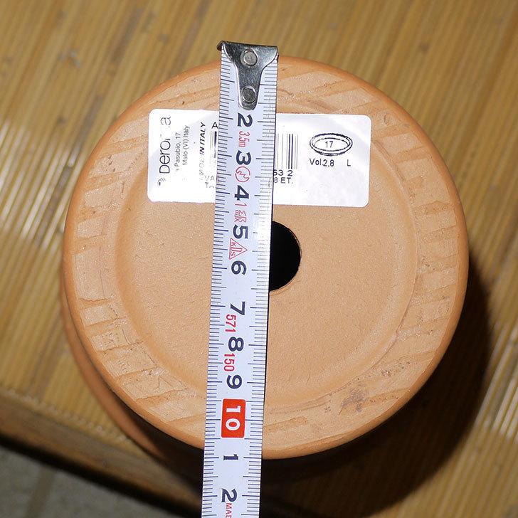 デローマ-トールポット(DEROMA-vaso-alto-Art.0D-180SZ)18cm-(6号)がケイヨーデイツーで198円-6.jpg