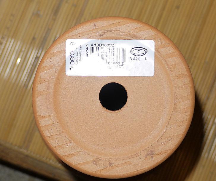 デローマ-トールポット(DEROMA-vaso-alto-Art.0D-180SZ)18cm-(6号)がケイヨーデイツーで198円-7.jpg