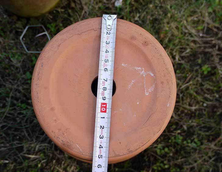 デローマ-トールポット(DEROMA-vaso-alto-Art.0D-260SZ)26cm-(8号)2-5.jpg