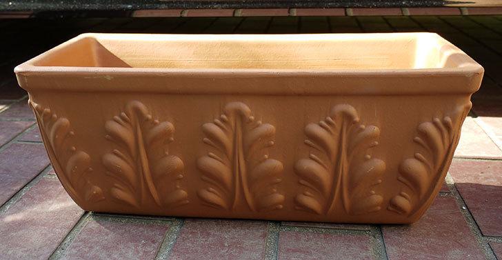 デローマ-ローマンウィンドウボックス(DEROMA-CASS.ROMA-Art.10420SE)42cmをケイヨーデイツーで買って来た1.jpg