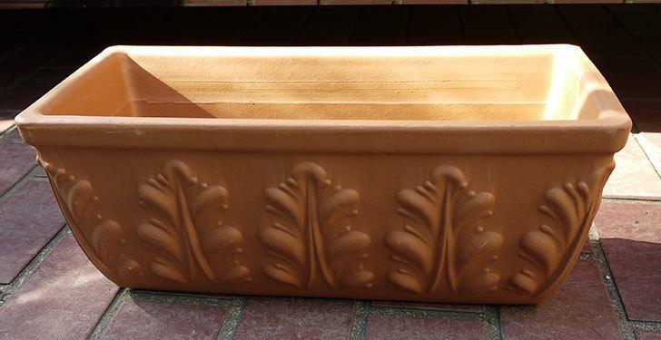 デローマ-ローマンウィンドウボックス(DEROMA-CASS.ROMA-Art.10420SE)42cmをケイヨーデイツーで買って来た2.jpg