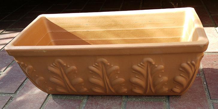 デローマ-ローマンウィンドウボックス(DEROMA-CASS.ROMA-Art.10420SE)42cmをケイヨーデイツーで買って来た3.jpg