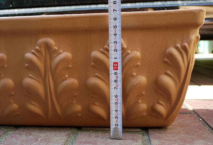 デローマ-ローマンウィンドウボックス(DEROMA-CASS.ROMA-Art.10420SE)42cmをケイヨーデイツーで買って来た7.jpg