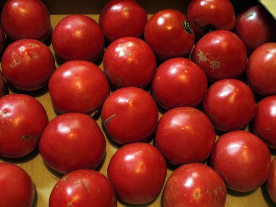 トマト買ってきた1.jpg