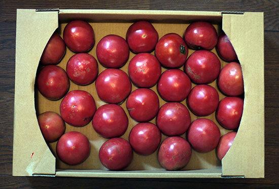 トマト買ってきた2.jpg