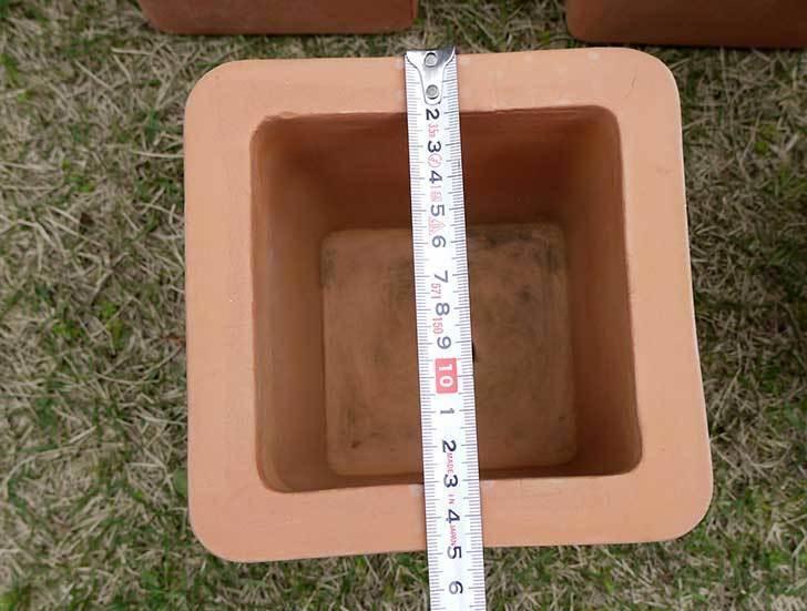 トルコテラコッタ-小鉢-スクエア-14×13をコメリで5個買った4.jpg