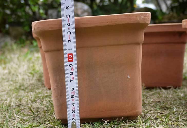 トルコテラコッタ-小鉢-スクエア-14×13をコメリで5個買った6.jpg