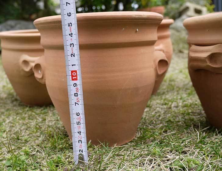 トルコテラコッタ-小鉢-プランター-21×16をコメリで5個買った5.jpg