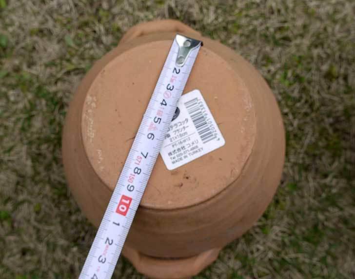 トルコテラコッタ-小鉢-プランター-21×16をコメリで5個買った8.jpg