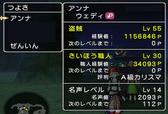 ドラゴンクエストX、プレイ中176-2.jpg