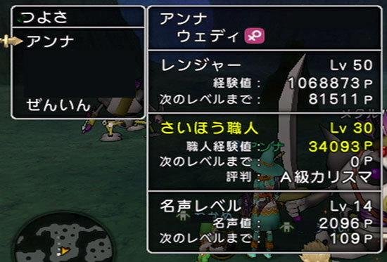 ドラゴンクエストX、プレイ中182-3.jpg