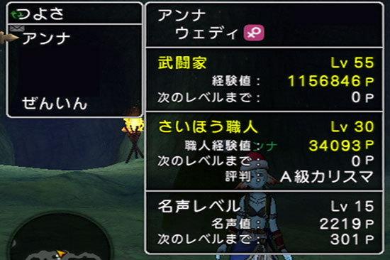 ドラゴンクエストX、プレイ中201-2.jpg