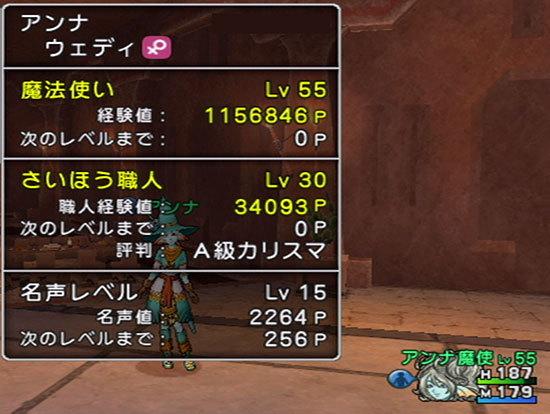 ドラゴンクエストX、プレイ中211-1.jpg