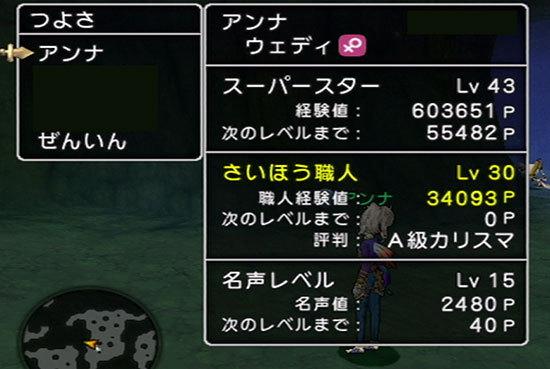 ドラゴンクエストX、プレイ中258-2.jpg
