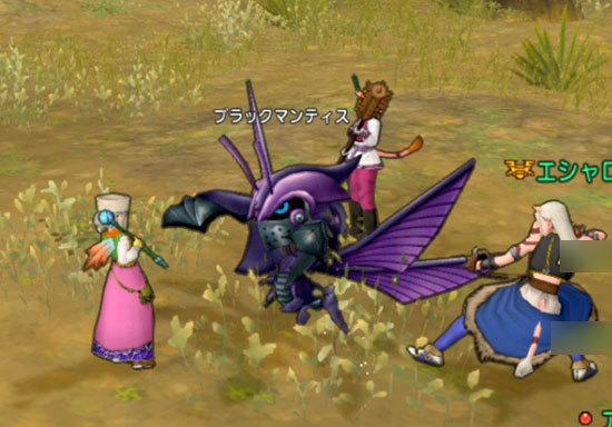 ドラゴンクエストX、プレイ中317-3.jpg