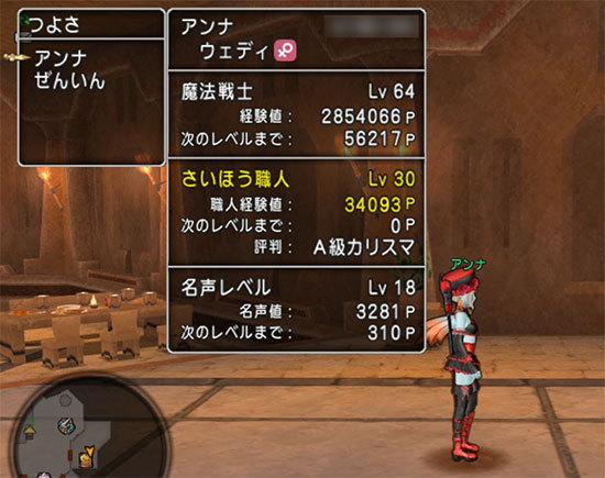 ドラゴンクエストX、プレイ中355-2.jpg