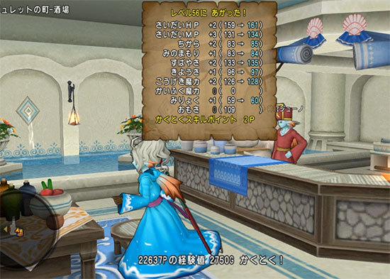 ドラゴンクエストX、プレイ中358-1.jpg