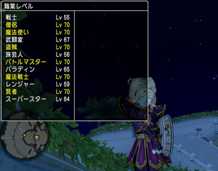 ドラゴンクエストX、プレイ中421-2.jpg